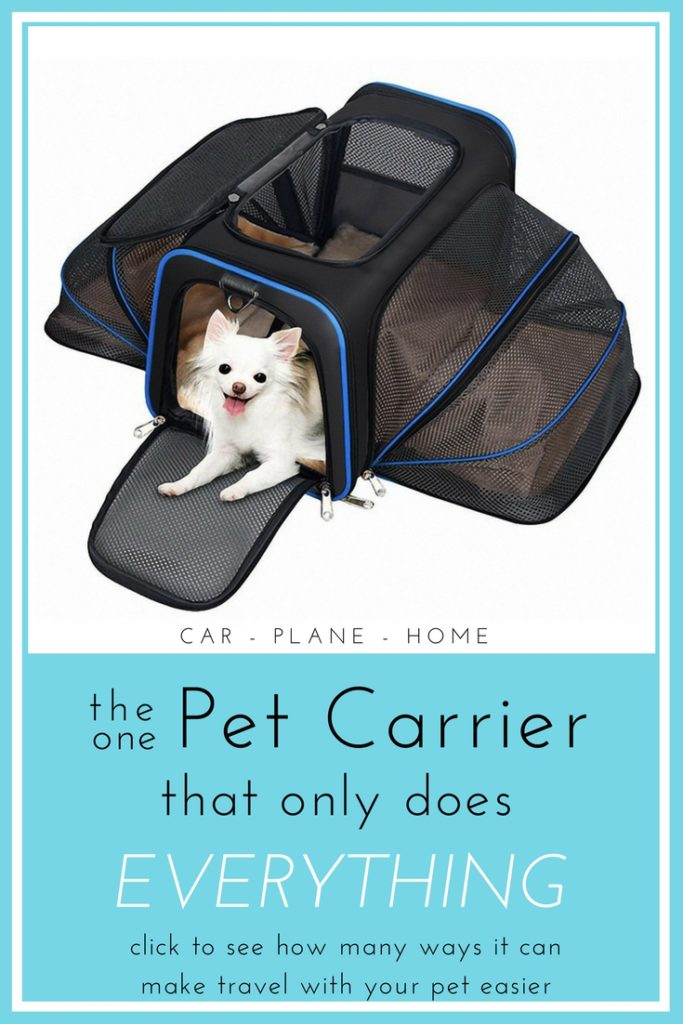 expandable best airline pet carrier for airplane approved